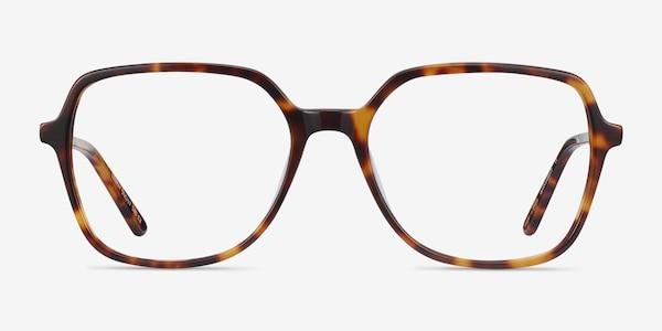 Lenny Tortoise Acetate-metal Eyeglass Frames