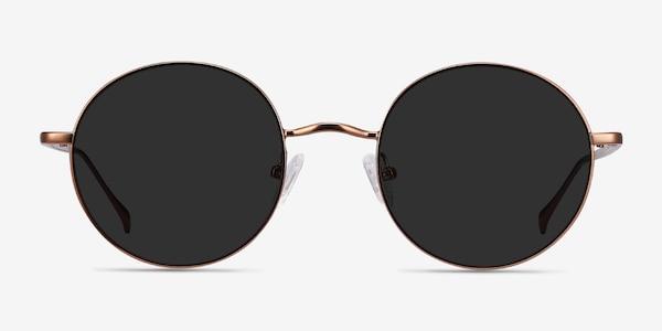 Sun Synapse Brown Metal Sunglass Frames