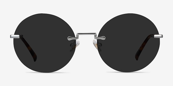 Wise Silver Metal Sunglass Frames