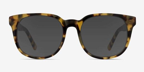 Tempest Tortoise Acetate Sunglass Frames