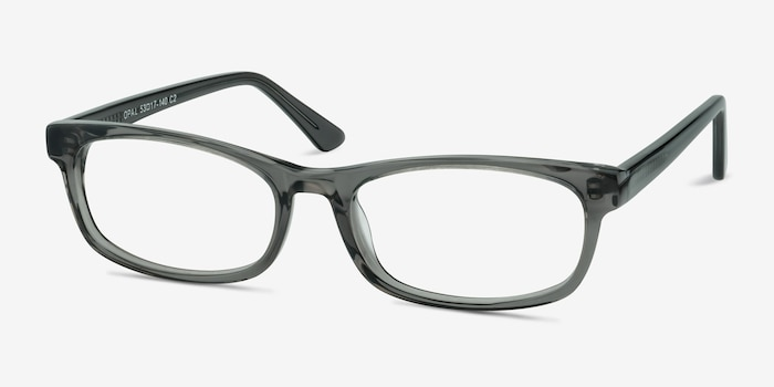 Opal Gray Acetate Eyeglass Frames from EyeBuyDirect, Angle View