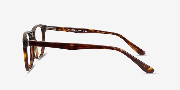 Damien Tortoise Acetate Eyeglass Frames from EyeBuyDirect, Side View