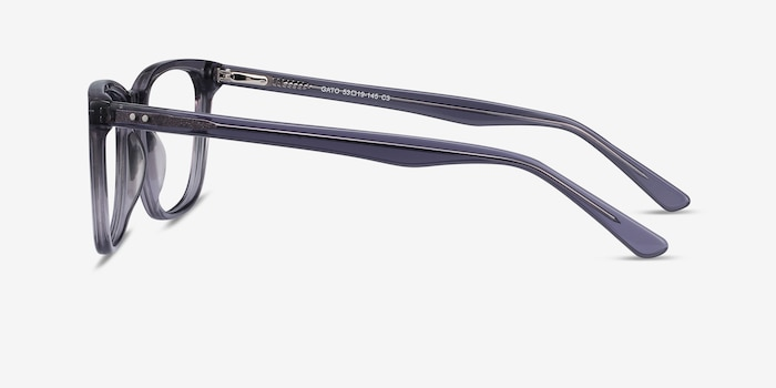 Gato Gray Acetate Eyeglass Frames from EyeBuyDirect, Side View
