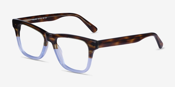 Feeling Brown Blue Acetate Eyeglass Frames from EyeBuyDirect, Angle View