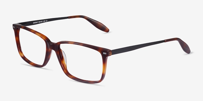 Hayday Tortoise Metal Eyeglass Frames from EyeBuyDirect, Angle View