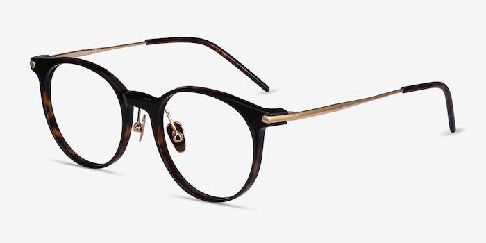 Vast Tortoise Acetate-metal Eyeglass Frames from EyeBuyDirect, Angle View