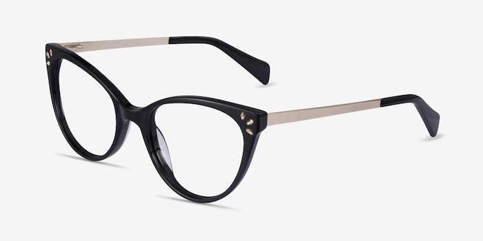 Beauty Black Acetate-metal Eyeglass Frames from EyeBuyDirect, Angle View