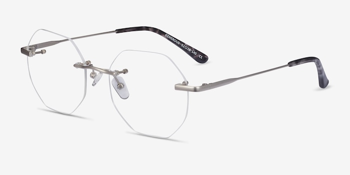 Generous Matte Silver Metal Eyeglass Frames from EyeBuyDirect, Angle View