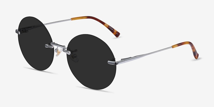 Wise Silver Metal Sunglass Frames from EyeBuyDirect, Angle View