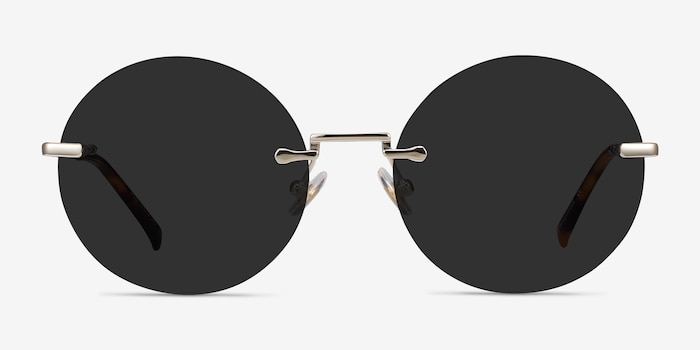 Wise Gold Metal Sunglass Frames from EyeBuyDirect, Front View