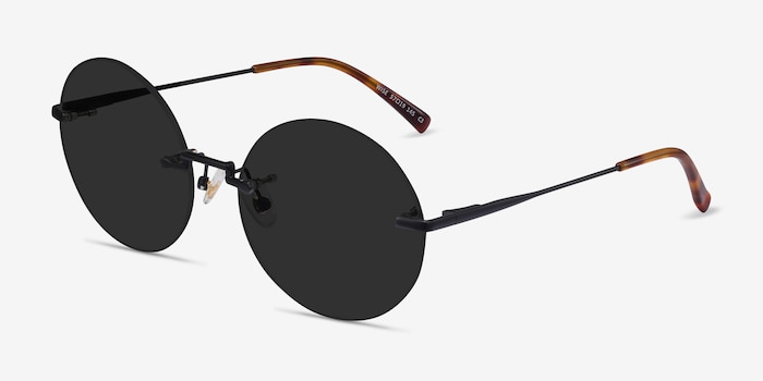 Wise Black Metal Sunglass Frames from EyeBuyDirect, Angle View