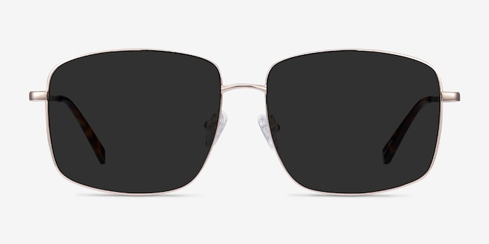 Ryker Gold Metal Sunglass Frames from EyeBuyDirect, Front View