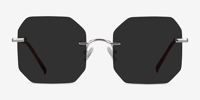 Elmira Silver Metal Sunglass Frames from EyeBuyDirect, Front View