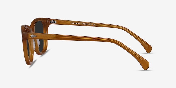 Sao Paulo Brown Acetate Sunglass Frames from EyeBuyDirect, Side View