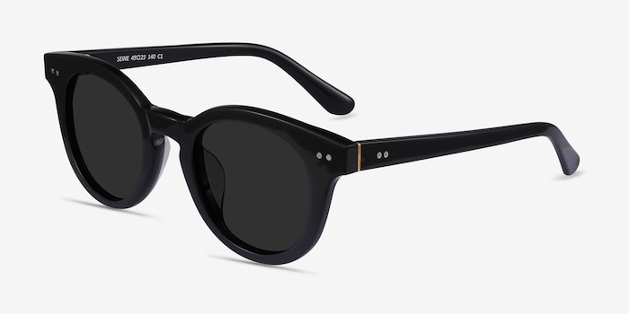 Seine Black Acetate Sunglass Frames from EyeBuyDirect, Angle View