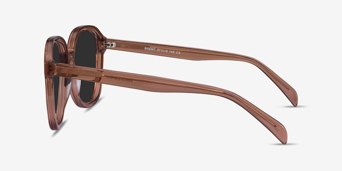 Brent Brown Acetate Sunglass Frames from EyeBuyDirect, Side View