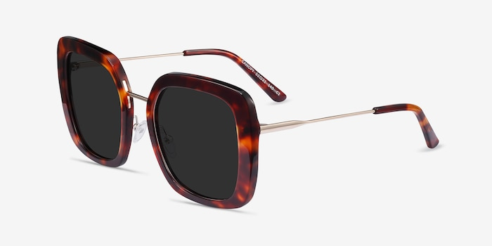 Canopy Tortoise Acetate-metal Sunglass Frames from EyeBuyDirect, Angle View