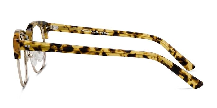 Concorde Tortoise Acetate Eyeglass Frames from EyeBuyDirect