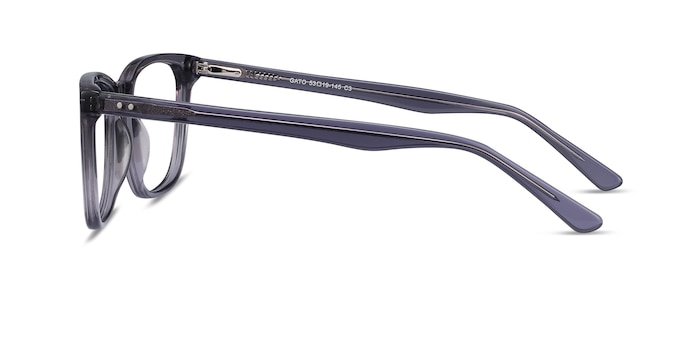 Gato Gray Acetate Eyeglass Frames from EyeBuyDirect