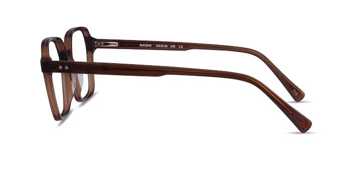 Bucolic Clear Brown Acetate Eyeglass Frames from EyeBuyDirect