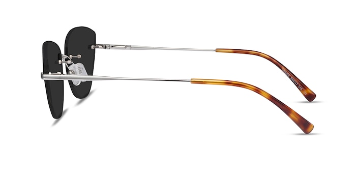 Linger Silver Metal Sunglass Frames from EyeBuyDirect