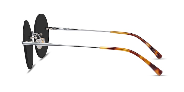Wise Silver Metal Sunglass Frames from EyeBuyDirect
