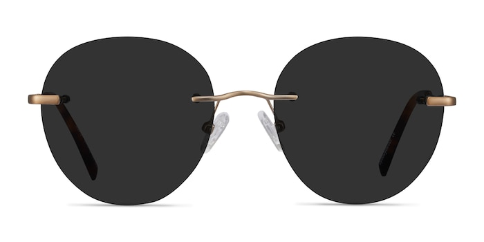 Coast Bronze Metal Sunglass Frames from EyeBuyDirect