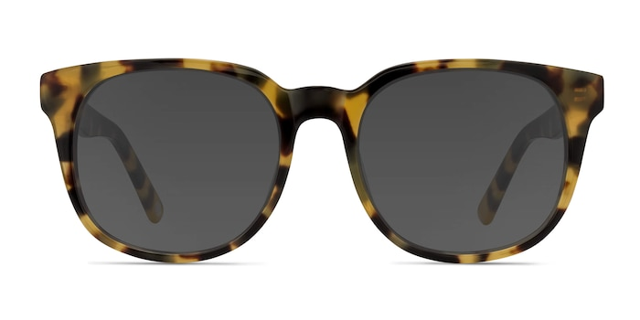 Tempest Tortoise Acetate Sunglass Frames from EyeBuyDirect
