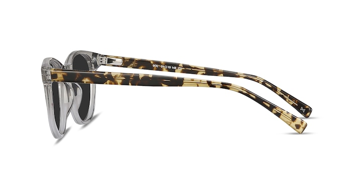 Sol Gray Clear Acetate Sunglass Frames from EyeBuyDirect