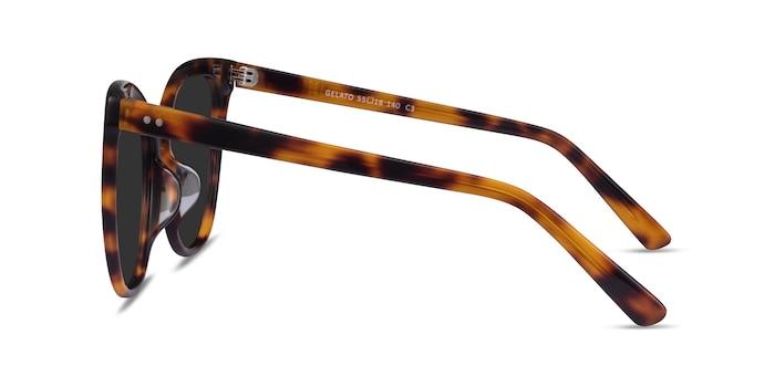 Gelato Tortoise Acetate Sunglass Frames from EyeBuyDirect