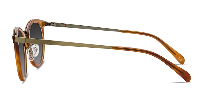 Sun Nostalgia Cinnamon Acetate-metal Sunglass Frames from EyeBuyDirect