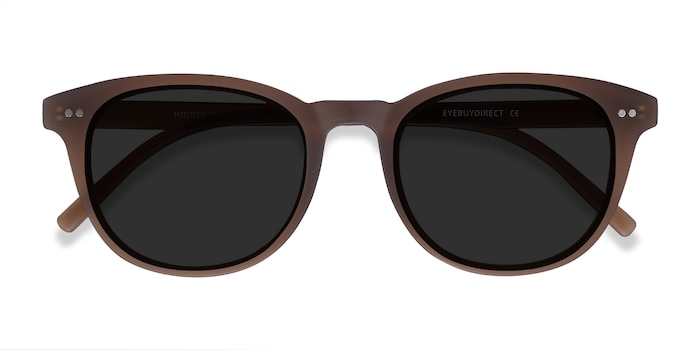 Brown Hidden -  Vintage Plastic Sunglasses