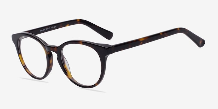 Stanford Tortoise Acetate Eyeglass Frames from EyeBuyDirect, Angle View