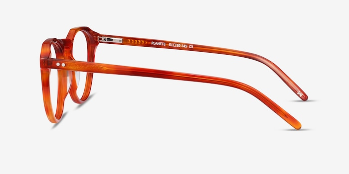 Planete Brown Tortoise Acetate Eyeglass Frames from EyeBuyDirect, Side View