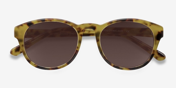 Coppola Brown/Tortoise Plastic Sunglass Frames from EyeBuyDirect, Closed View